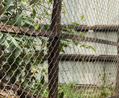 wire netting mesh fence COLOR PHOTO OF CHAIN-LINK FENCE (ALSO REFERRED TO AS WIRE NETTING, WIRE Wire Netting Mesh Fence Fantastic COLOR PHOTO OF CHAIN-LINK FENCE (ALSO REFERRED TO AS WIRE NETTING, WIRE Images