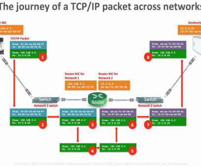 wiring a ethernet switch Wiring Diagram, A Ethernet Switch Best Wiring Diagram Ethernet Refrence, Diagram Best Network Switch Wiring A Ethernet Switch Nice Wiring Diagram, A Ethernet Switch Best Wiring Diagram Ethernet Refrence, Diagram Best Network Switch Galleries
