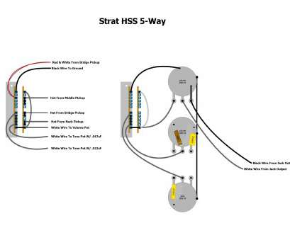 wiring a fender s1 switch Fender S1 Switch Wiring Diagram Inspirational, 5, New 1977 Stratocaster Of Inspirationa Strat Wiring A Fender S1 Switch Practical Fender S1 Switch Wiring Diagram Inspirational, 5, New 1977 Stratocaster Of Inspirationa Strat Photos