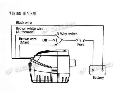 wiring a float switch to bilge pump Amazing Boat Float Switch Wiring Diagram Ideas Electrical Circuit Striking Bilge Pump With Rule Automatic Wiring A Float Switch To Bilge Pump Top Amazing Boat Float Switch Wiring Diagram Ideas Electrical Circuit Striking Bilge Pump With Rule Automatic Galleries
