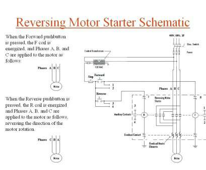 Wiring A Motor Reverse Switch Professional Wiring Diagram Phase Motor Forward Reverse Switch Fancy Solutions