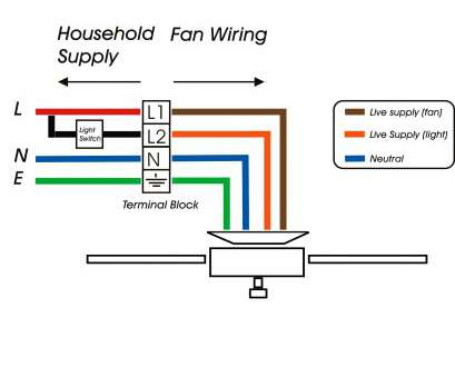 16 Professional Wiring Diagram 3, Switch Split Receptacle Collections