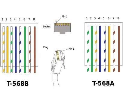 Rj45 Wiring Diagram Cat6 - Schematics Online on
