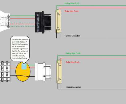 Wiring Light Fixture Socket Fantastic Light Socket Wiring Diagram