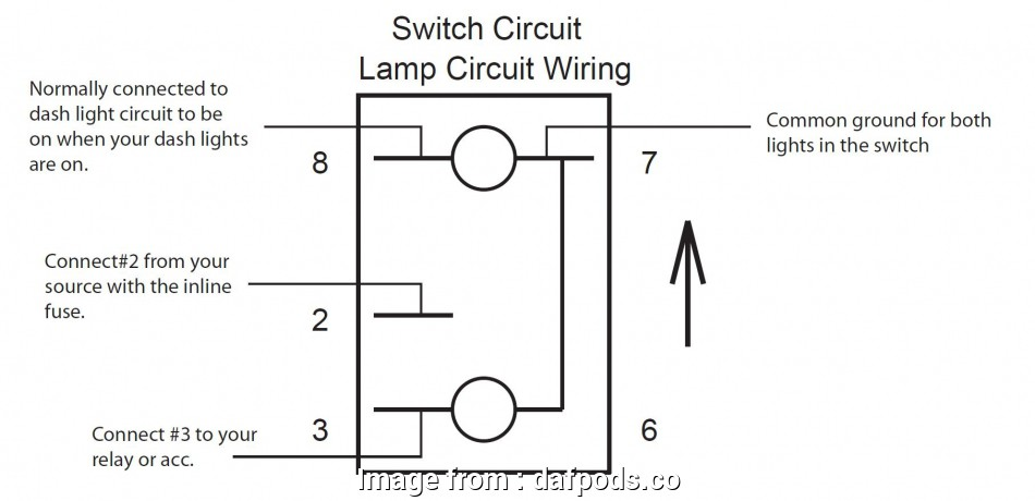 Two Position Toggle Switch Wiring Cleaver 5  Toggle Switch Wiring Diagram Basic Guide Wiring