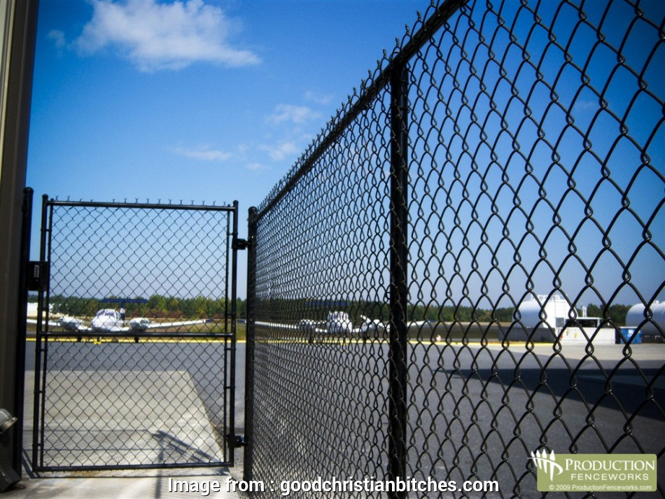 types of wire mesh fence 12 Photos Gallery, Importance of Using, Right Type of Wire Mesh Fence 8 Top Types Of Wire Mesh Fence Ideas