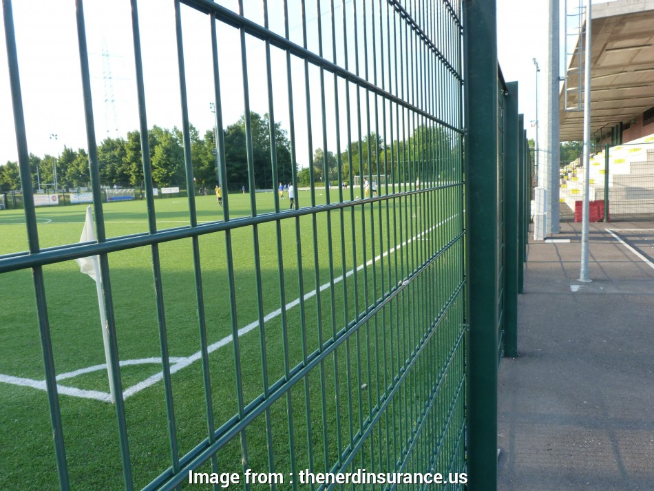 welded wire mesh panels nz Manufacturer Powder Coated Twin Wire Welded Mesh Double Wire throughout sizing 3266 X 2449 14 Fantastic Welded Wire Mesh Panels Nz Images