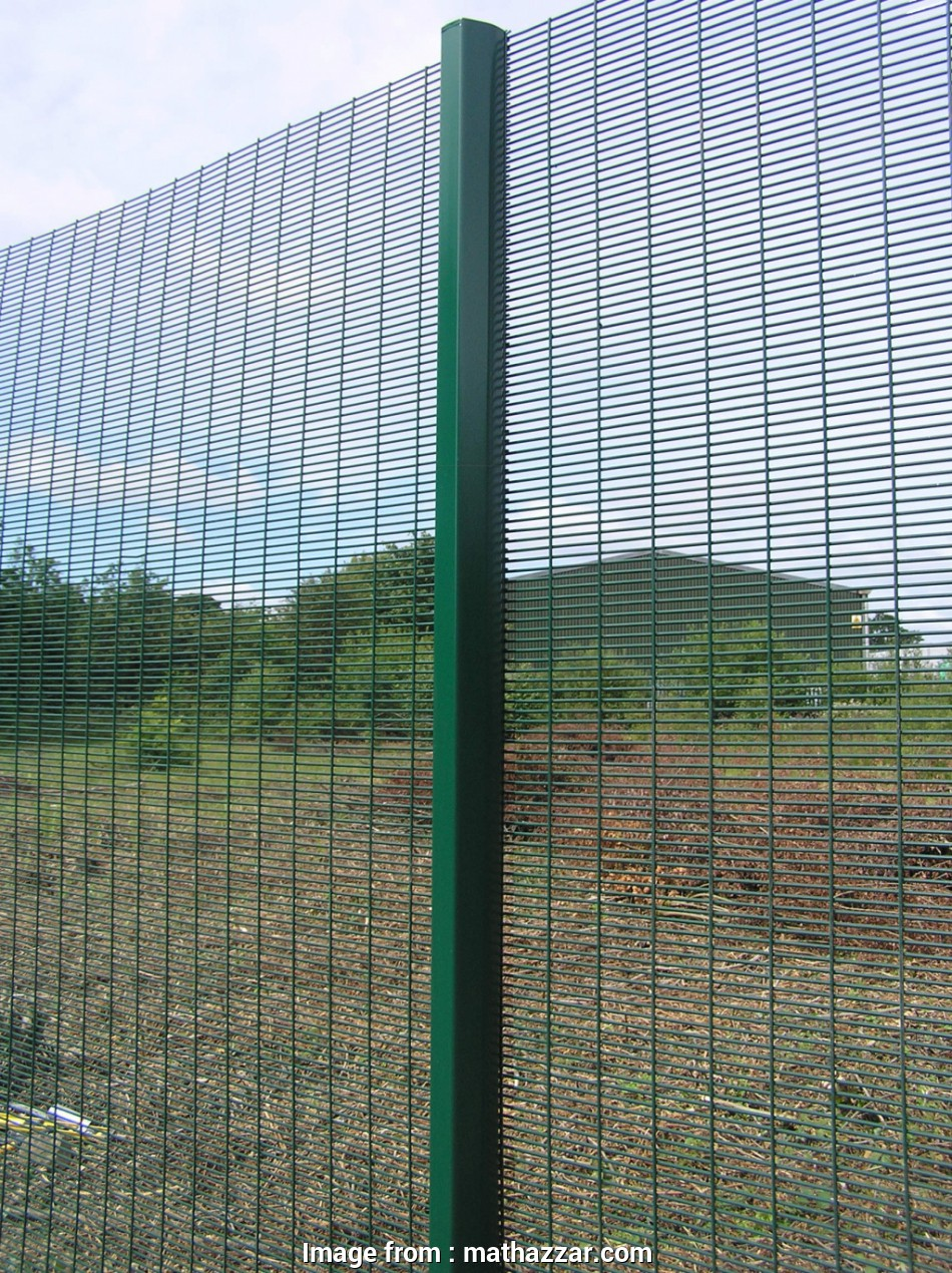 18 Cleaver Werson Wire Mesh Fence Ltd Pictures - Tone Tastic
