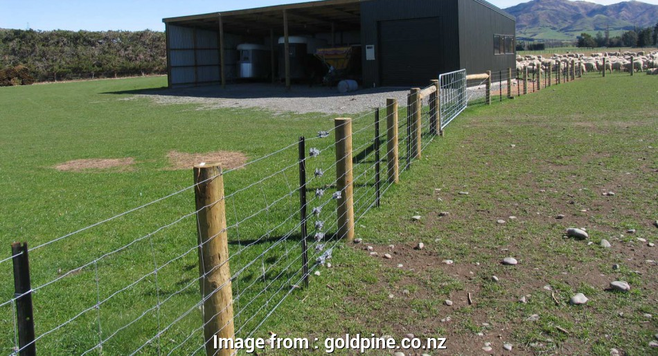 wire mesh fence nz Wire, Netting, Goldpine 18 Popular Wire Mesh Fence Nz Collections