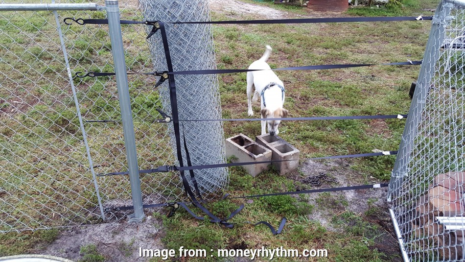 wire mesh fence stretcher Pull a fence without a fence puller or come-along, MoneyRhythm 8 Fantastic Wire Mesh Fence Stretcher Photos