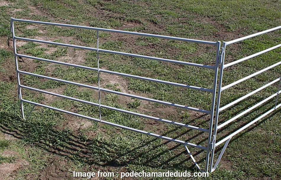 wire mesh horse panels Horse Wire Fence Panels Lovely, Page 0 Of Horse Wire Fence Panels Lovely 53 New 13 Creative Wire Mesh Horse Panels Galleries