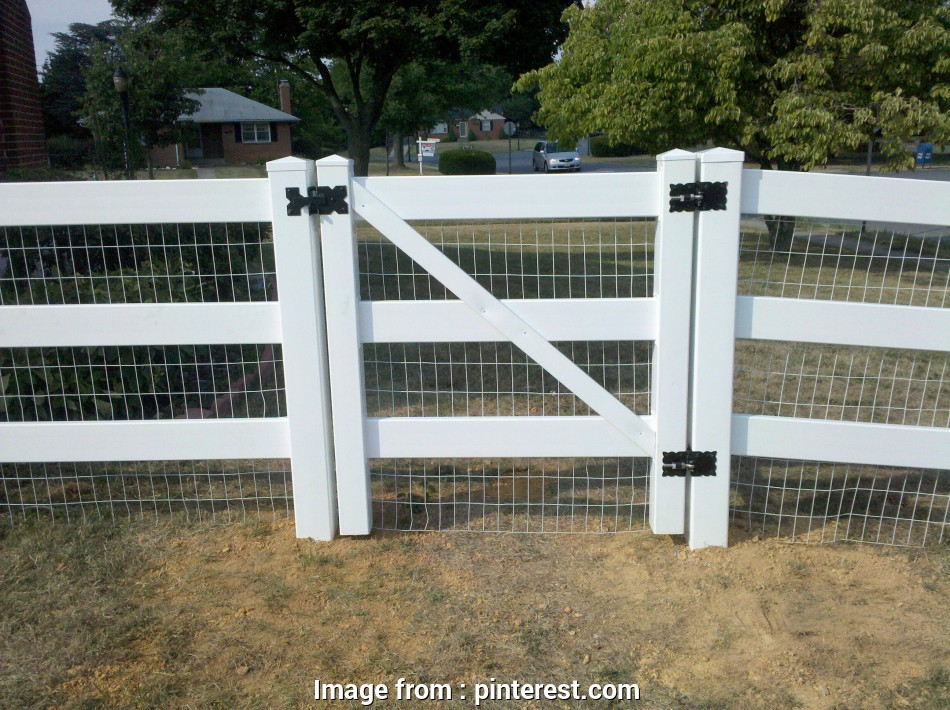 wire mesh on vinyl fence vinyl fence, wire, Google Search, Chickens, Pinterest 17 Best Wire Mesh On Vinyl Fence Pictures