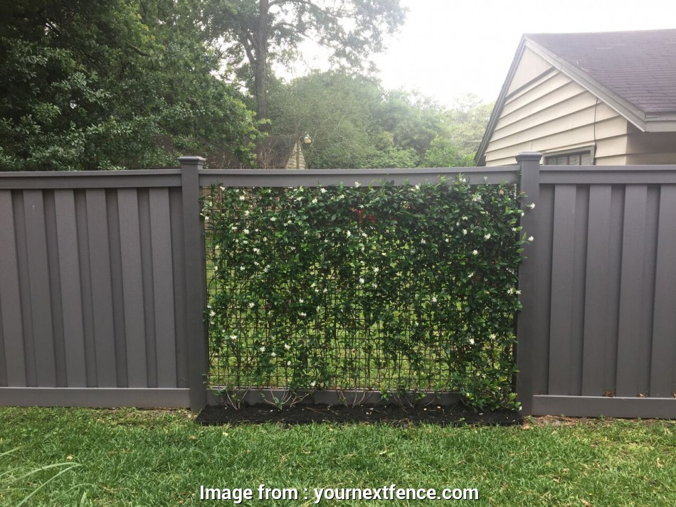 wire mesh panels houston By alternating Trex Seclusions sections with, vine covered panels, Kenji added visual interest to, fence 15 Simple Wire Mesh Panels Houston Photos