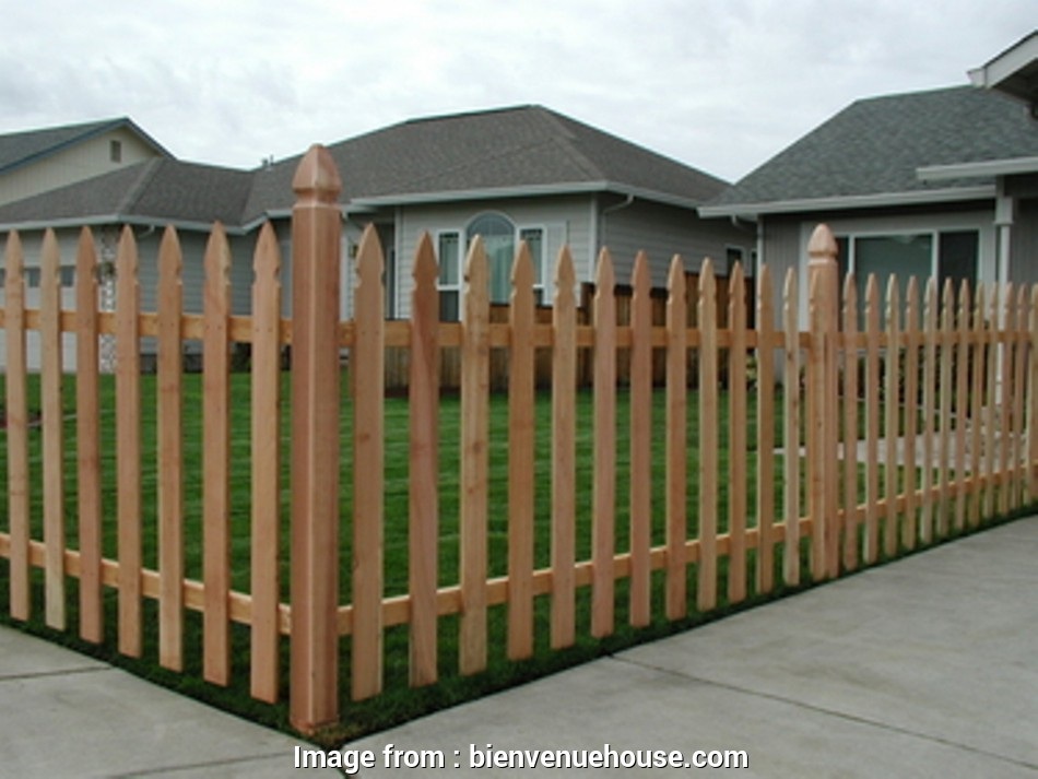 wire mesh panels menards Vinyl Picket Fence Panels At Menards BEST HOUSE DESIGN : Wood 20 Nice Wire Mesh Panels Menards Galleries