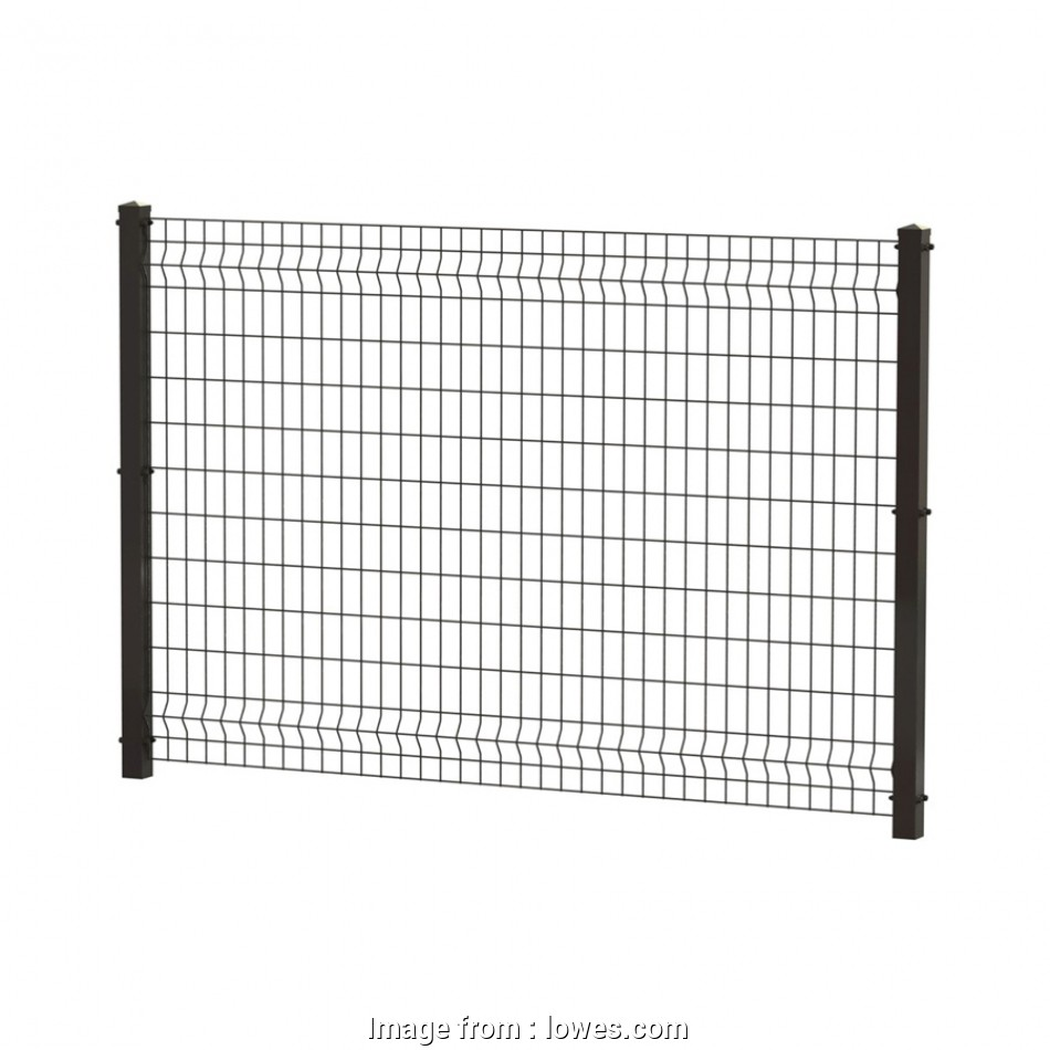 wire mesh panels near me Shop Ironcraft (Actual:-ft x-ft) Black/Powder-Coated Steel 13 Nice Wire Mesh Panels Near Me Images