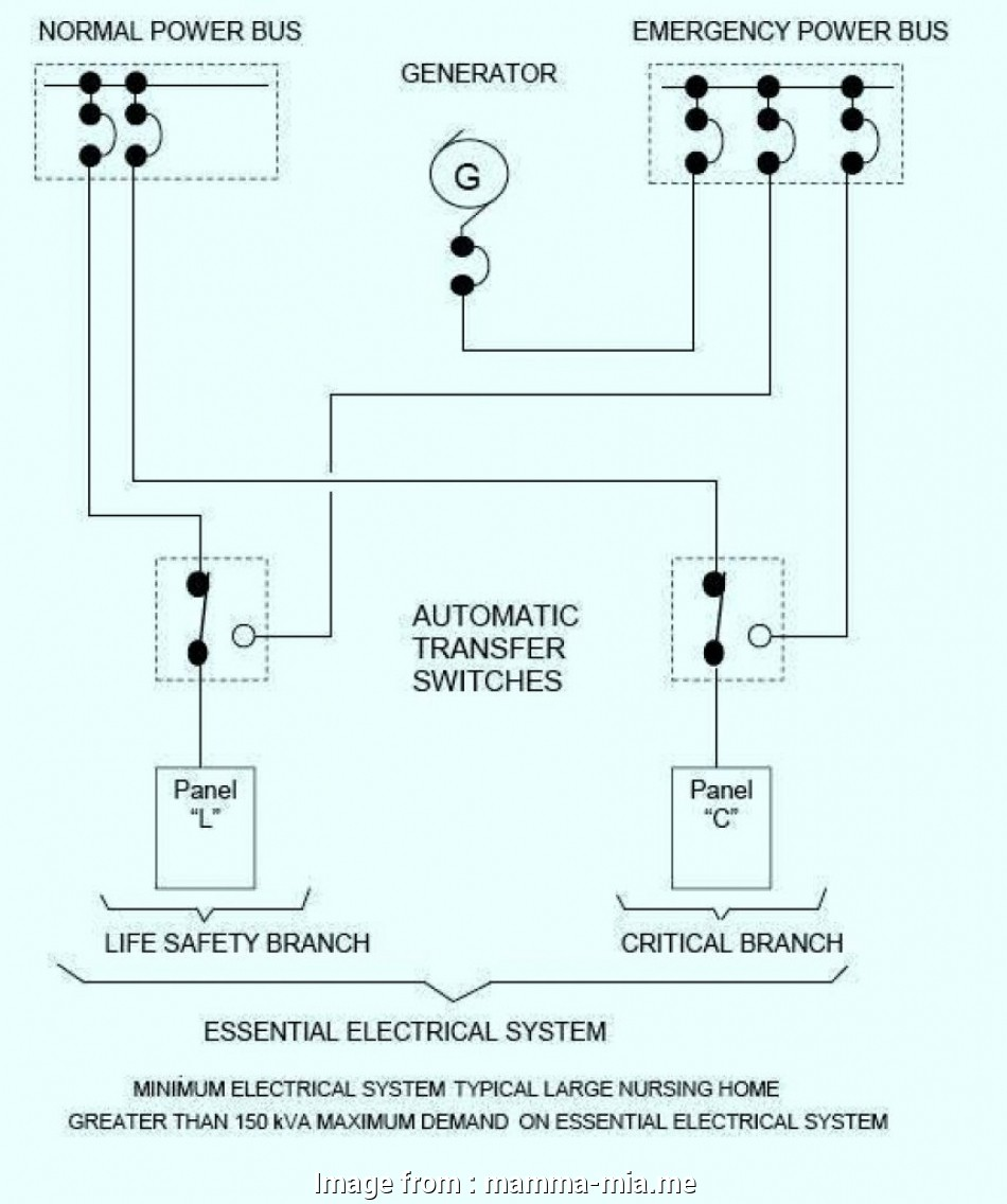 Baldor Motor Wiring Diagrams 3 Phase from tonetastic.info