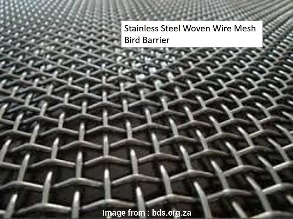 woven wire mesh cape town Stainless Steel Woven Wire Mesh Bird Barrier 10 Nice Woven Wire Mesh Cape Town Ideas