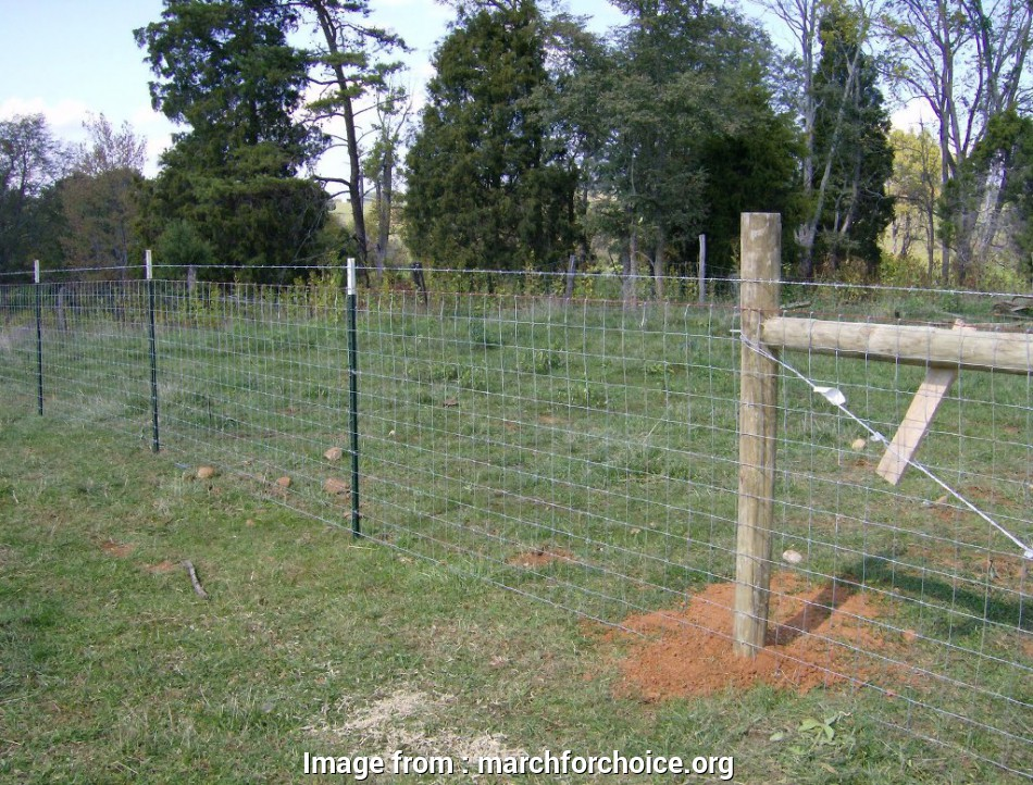 woven wire mesh fence cost Woven Wire Fence Best Protection, Fence, Gate Ideas 8 Best Woven Wire Mesh Fence Cost Galleries