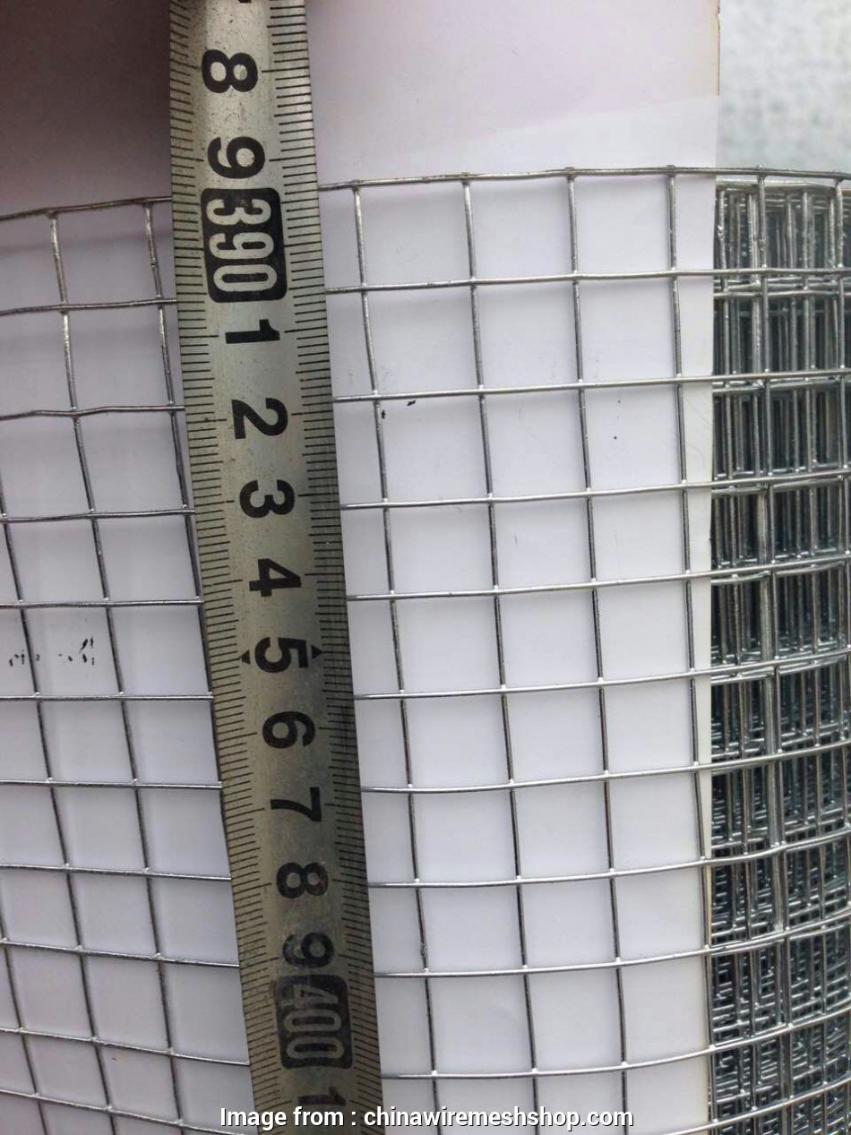 1 4 inch wire mesh 1/4 inch, dipped galvanized welded wire mesh with cheap price 20 Perfect 1 4 Inch Wire Mesh Galleries