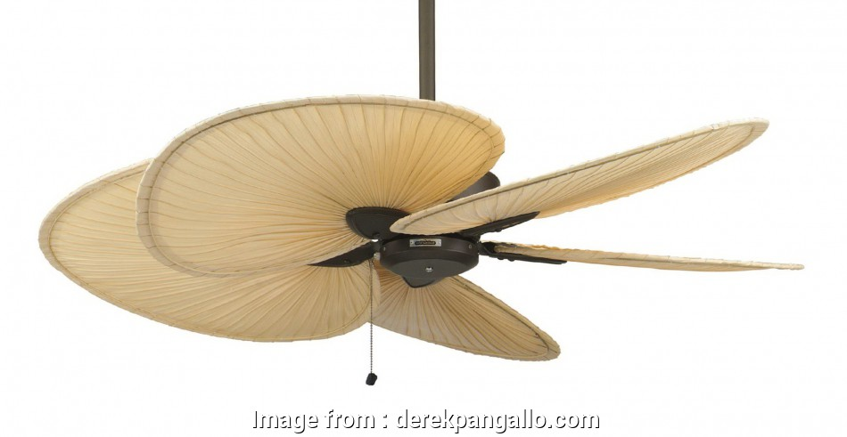 Aloha Breeze Ceiling  Wiring Diagram Practical Lamp Tips