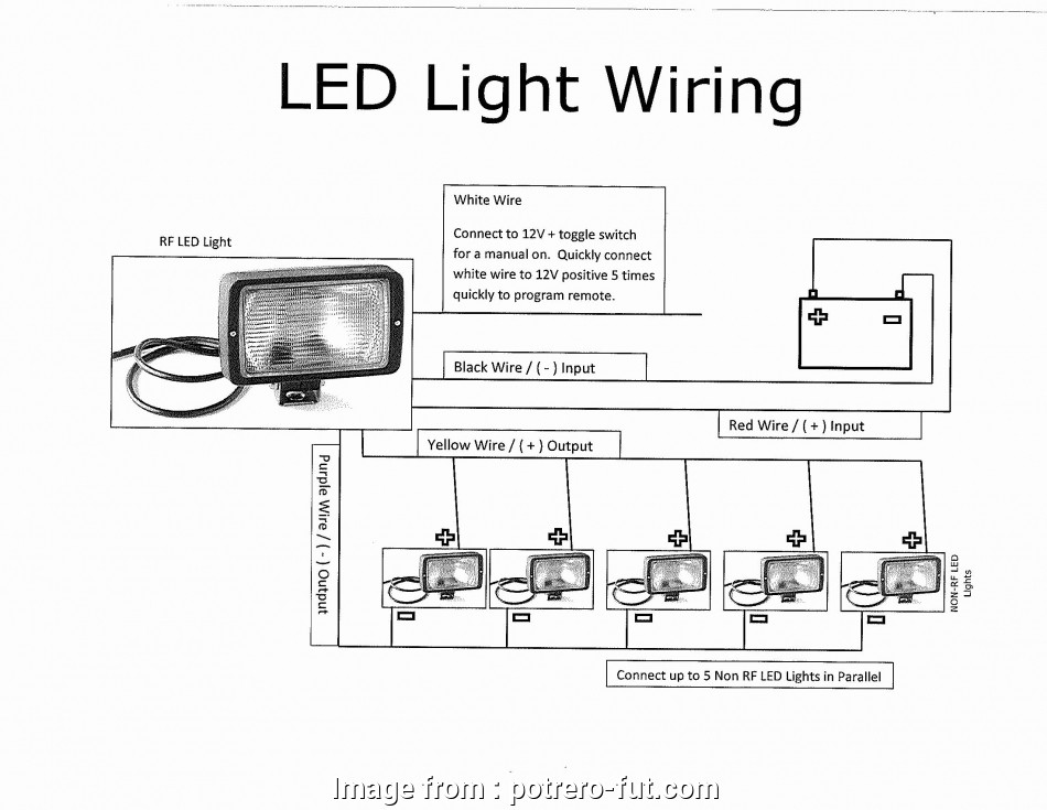 Automotive Rocker Switch Wiring Diagram Fantastic Lighted