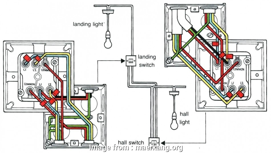 Double Light Switch Wiring Common Uk Fantastic     Clipsal 3  Switch Wiring Diagram Free