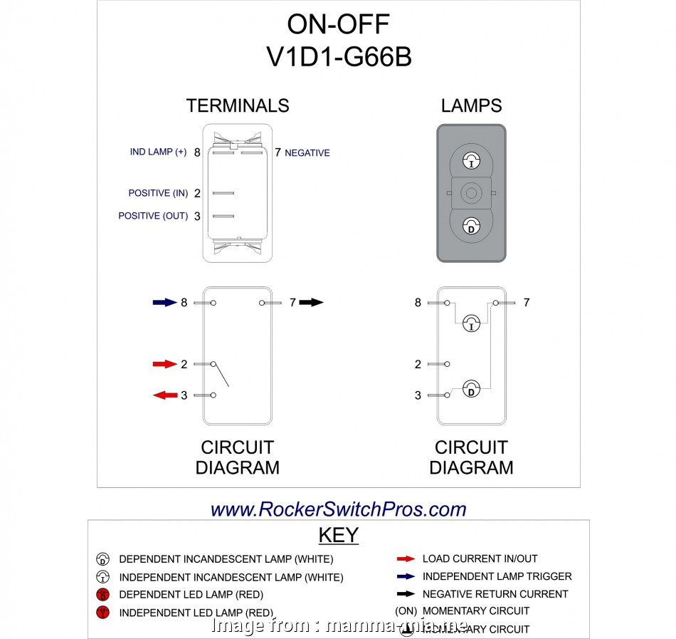 Double Pole Single Throw Rocker Switch Wiring Diagram