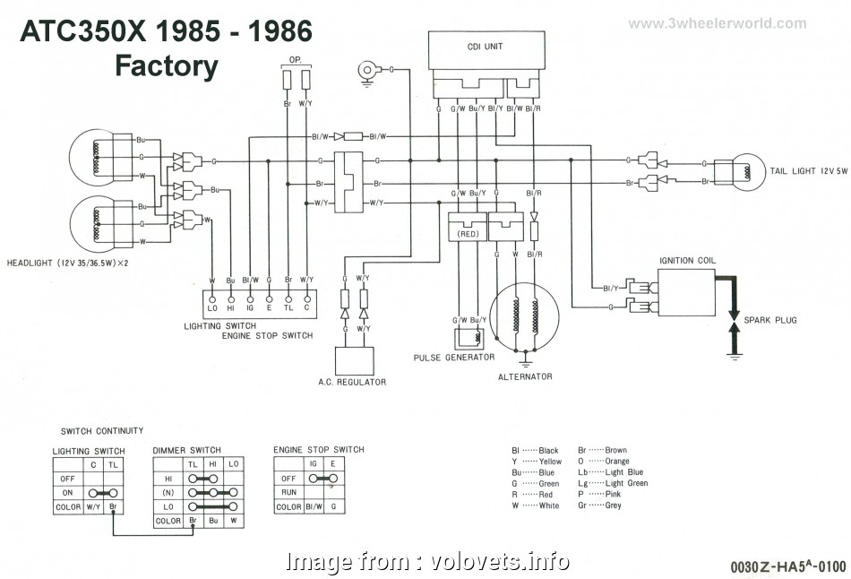 Electrical  Switch Wiring Diagram Fantastic Ignition