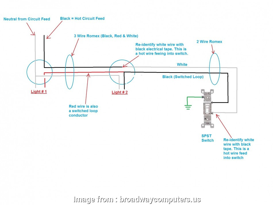 How To Wire  Switches To  Light Diagram Best Wiring Diagram  Two Lights On  Switch  Wiring