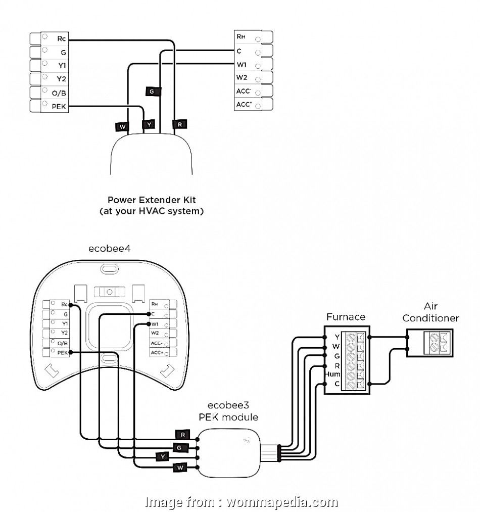 Wiring Diagram For Nest 2 Zone from tonetastic.info