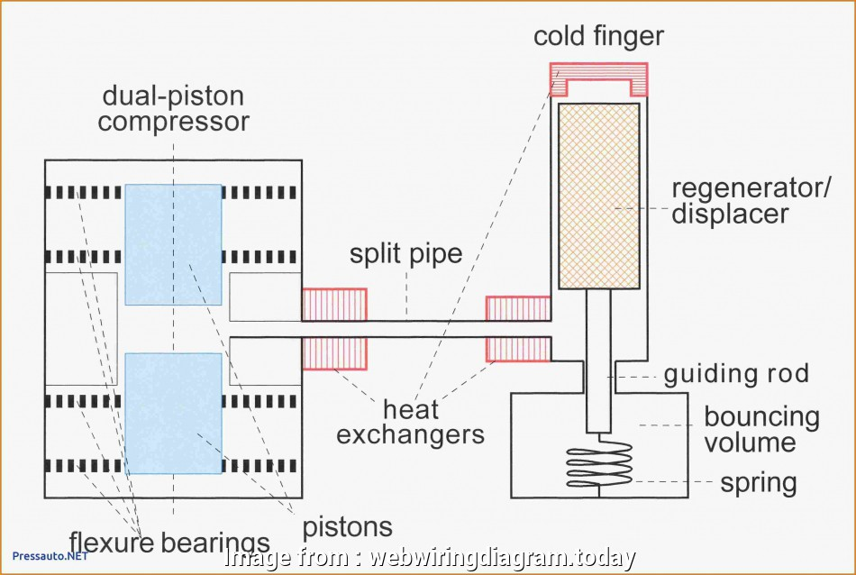 Potterton Prt2 Thermostat Wiring Diagram Cleaver Wiring