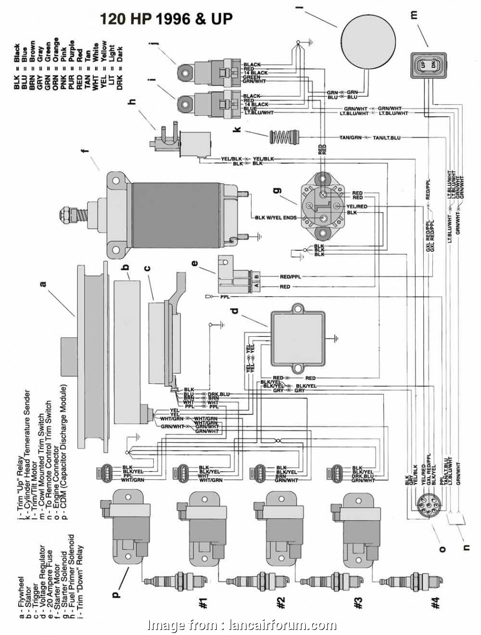 power trim wiring diagram johnson engine wiring diagram yamaha 40 hp outboard wiring library rh 79 codingcommunity de yamaha 40 hp Power Trim Wiring Diagram Johnson Simple Engine Wiring Diagram Yamaha 40 Hp Outboard Wiring Library Rh 79 Codingcommunity De Yamaha 40 Hp Photos