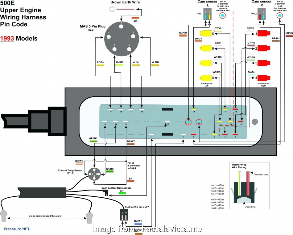 diagram wall ethernet plate wiring diagram full version hd