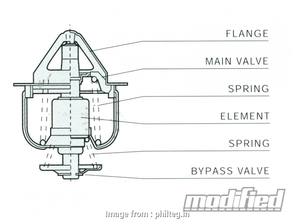 Ritetemp 8022 Thermostat Wiring Diagram Nice Differential