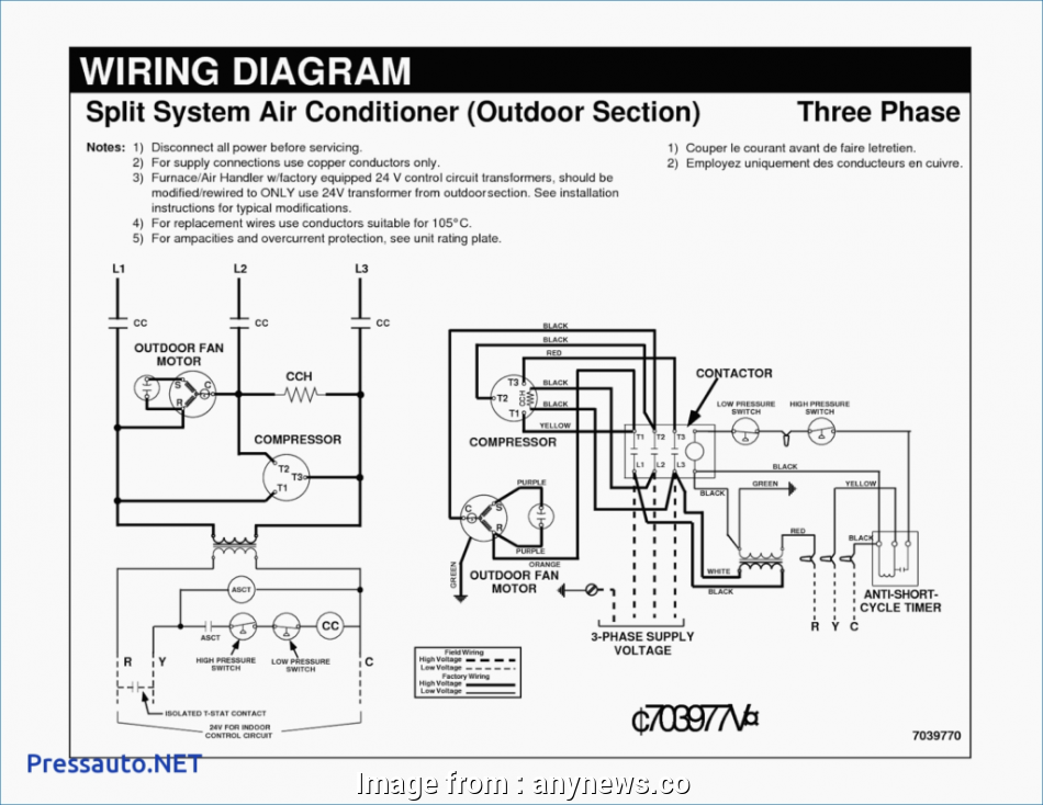 Sunvic Thermostat Wiring Diagram Perfect Wiring Diagram  3