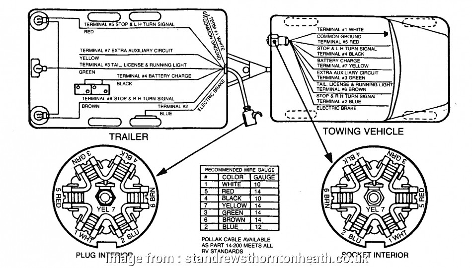 Sure Trac Trailer Wiring Diagram from tonetastic.info