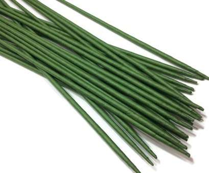 24 gauge florist wire Get Quotations · Stems Wire Large Long, Length, X 4 mm Floral Wire Flower Stem Artificial 24 Gauge Florist Wire Practical Get Quotations · Stems Wire Large Long, Length, X 4 Mm Floral Wire Flower Stem Artificial Solutions