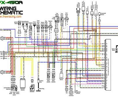 400Ex Starter Wiring Diagram Most How To Diagnose, Repair Your Honda TRX450ER Starting Clutch ...