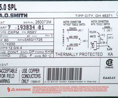8 Professional Ao Smith Electric Motor Wiring Diagram Images