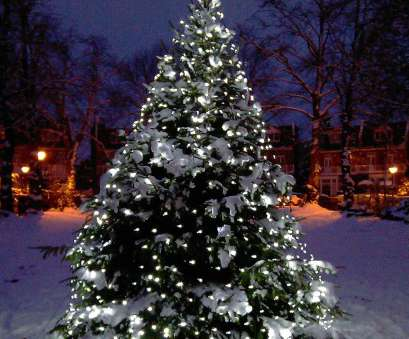 christmas tree lights with white wire uk Christmas Tree Light Ideas, Christmas Light Ideas, Inspiration Christmas Tree Lights With White Wire Uk Creative Christmas Tree Light Ideas, Christmas Light Ideas, Inspiration Photos