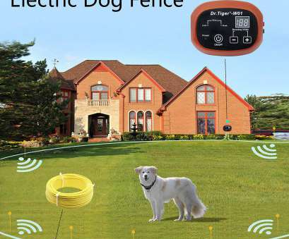 electric dog fence wireless vs wired Amazon.com : Dr.Tiger 2 Receivers Electric, Fence, Invisible Fence, Dogs with, Ft Wire, Collar Send Beeps, Shock Correction Electric, Fence Wireless Vs Wired Perfect Amazon.Com : Dr.Tiger 2 Receivers Electric, Fence, Invisible Fence, Dogs With, Ft Wire, Collar Send Beeps, Shock Correction Images