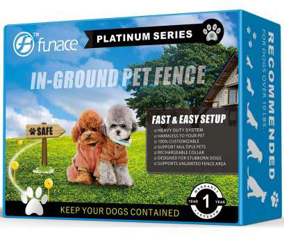 electric dog fence wireless vs wired Amazon.com : Invisible InGround, Fence System (Platinum), 100% Safe & Effective Electric Underground Wired, Containment,, Give Your, The Space Electric, Fence Wireless Vs Wired Nice Amazon.Com : Invisible InGround, Fence System (Platinum), 100% Safe & Effective Electric Underground Wired, Containment,, Give Your, The Space Photos