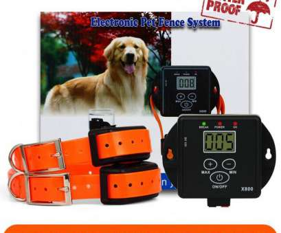 electric dog fence wireless vs wired Wire Fencing Wired, Fence Reviewsstonishingst Electric Reviews Wireless Electronic Electric, Fence Wireless Vs Wired Brilliant Wire Fencing Wired, Fence Reviewsstonishingst Electric Reviews Wireless Electronic Galleries
