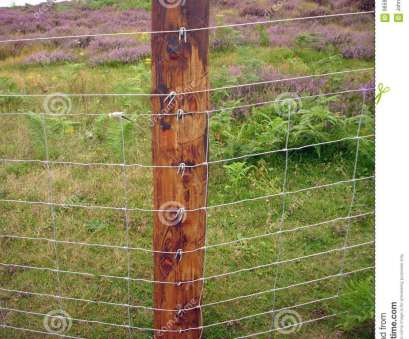 erecting wire mesh fence New wire netting fence stock image. Image of wooden, nail, 98593165 Erecting Wire Mesh Fence Perfect New Wire Netting Fence Stock Image. Image Of Wooden, Nail, 98593165 Ideas