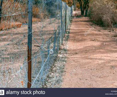 fence wire mesh australia Electric fence with metal mesh in South Australia Stock Photo Fence Wire Mesh Australia Practical Electric Fence With Metal Mesh In South Australia Stock Photo Galleries