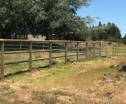 fence with wire mesh Ranch Fence With Wire Screen, Bend Fencing, Cedar, Chain Link Fence With Wire Mesh Most Ranch Fence With Wire Screen, Bend Fencing, Cedar, Chain Link Images