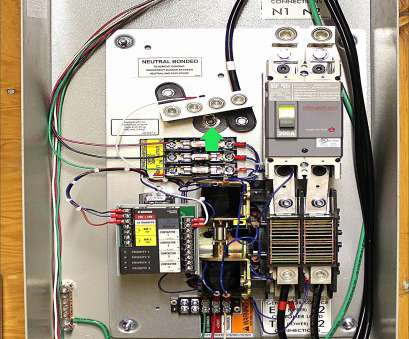 10 Practical Generac, Amp Transfer Switch Wiring Diagram Images