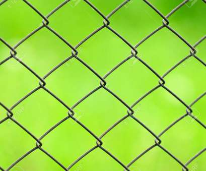 Green Wire Mesh New Stock Photo, Wire Mesh Fence Close-Up On Green Background Images