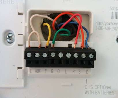 13 Popular Honeywell Thermostat Th3110D1008 Wiring Diagram Images