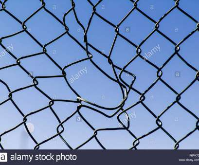 12 Nice Hurricane Wire Mesh Fence Collections